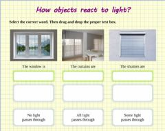 Ficha interactiva How objects react to light