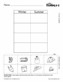Ficha interactiva Winter Fun Sort
