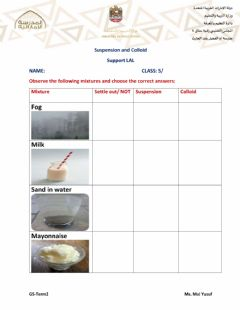 Interactive worksheet Suspension and colloids