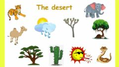 Interactive worksheet The desert
