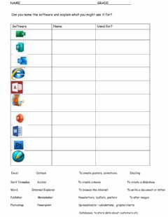 Interactive worksheet Computer Software
