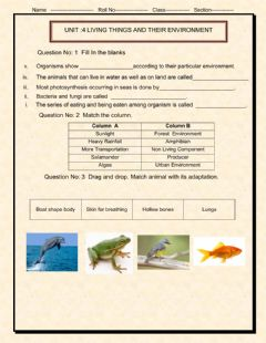 Interactive worksheet Unit:4 Living things and Environment