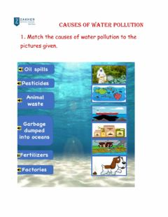 Ficha interactiva Causes of water pollution