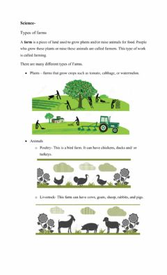 Interactive worksheet Types of farms