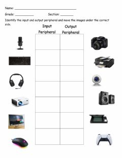 Ficha interactiva Input and Output Peripherals