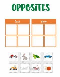 Interactive worksheet Opposites - fast and slow