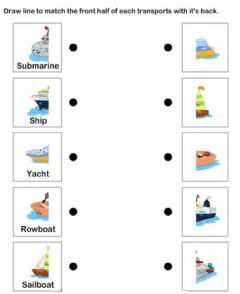 Interactive worksheet Water transport