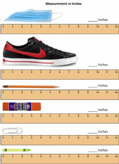 Interactive worksheet Measurement in Inches