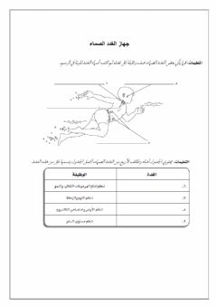 Interactive worksheet الغدد الصماء أ