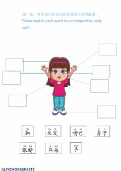 Interactive worksheet Chinese Body Parts
