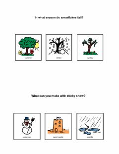 Interactive worksheet All Kinds of Snow