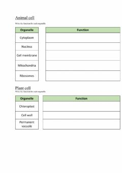 Interactive worksheet Plant and animal cell function