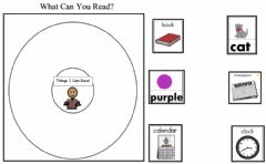 Ficha interactiva What Can You read