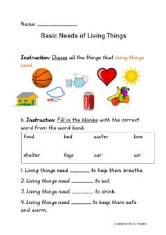 Interactive worksheet Basic Needs of Living things