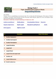 Interactive worksheet Smallest and largest in Plant Kingdom