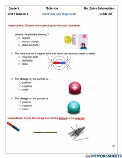 Interactive worksheet Static electricity and magnetism