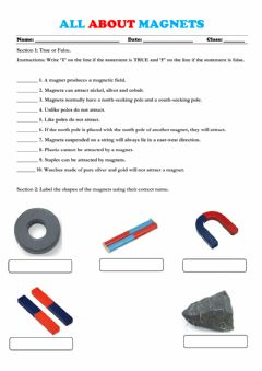 Interactive worksheet Introduction to Magnets