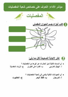 Interactive worksheet المفصليات