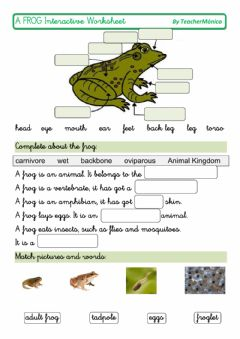 Interactive worksheet A frog