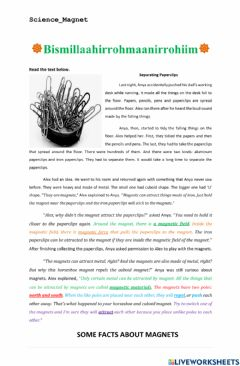 Interactive worksheet Magnet's NOte