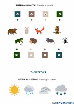 Interactive worksheet The Weather 1. b