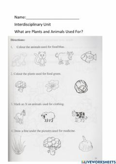 Interactive worksheet What Plants and Animals are Used For?