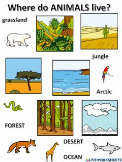 Interactive worksheet Animal habitats