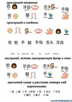 Interactive worksheet Части тела, body parts 身体部位