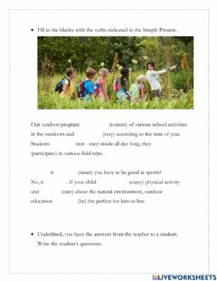 Interactive worksheet Simple Present and WH- questions