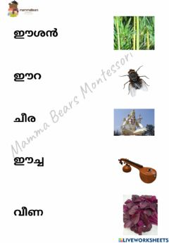 Ficha interactiva Malayalam vocabulary reading