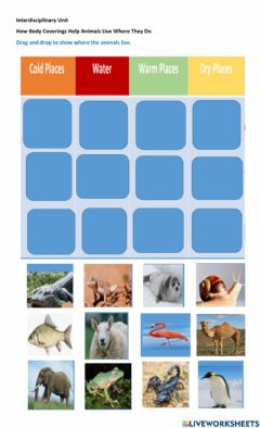 Interactive worksheet How Body Coverings Help Animals Live Where They Do