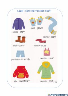 Interactive worksheet the clothes1