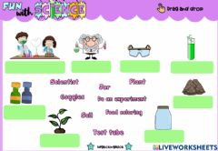 Interactive worksheet Science (Drag and drop)