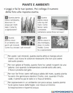 Interactive worksheet Le piante e l'ambiente
