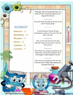Interactive worksheet The cell