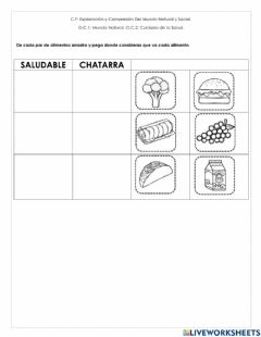 Interactive worksheet Saludable o chatarra