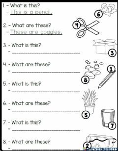 Interactive worksheet 4.6. Fun With Science