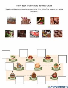 Interactive worksheet From Bean to Chocolate