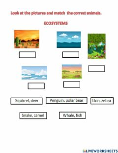 Interactive worksheet Ecosystems