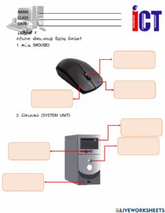 Ficha interactiva Computer Mouse And System Unit
