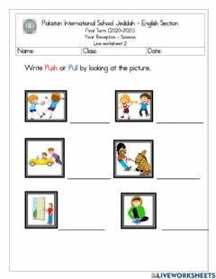 Interactive worksheet Science push and pull liveworksheet 1