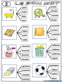 Interactive worksheet Le bon mot 2