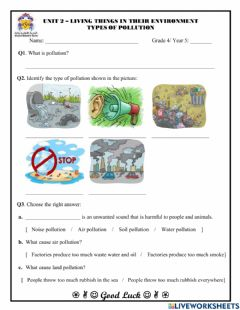 Interactive worksheet Types of Pollution