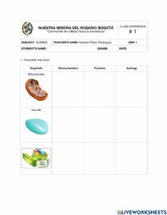 Interactive worksheet Celular organelles