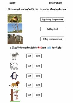 Interactive worksheet Animals adapt for survival