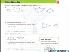 Interactive worksheet Similar polygon