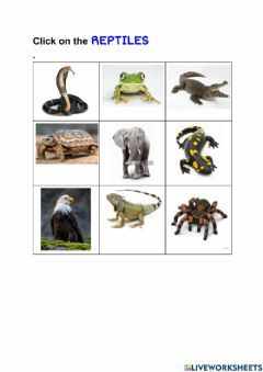 Interactive worksheet Choose the reptiles