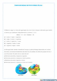 Interactive worksheet Vamos recordar sobre células