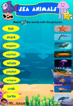 Ficha interactiva Sea Animals (Match the words with the pictures)