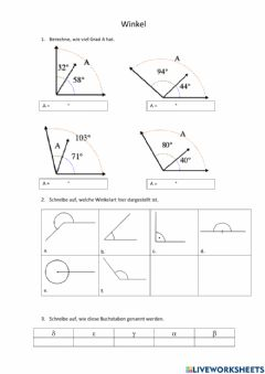 Interactive worksheet Winkel